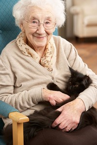 Carriage Hill Assisted Living NH is a Cat-Friendly Facility!